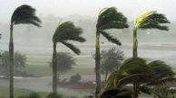باد بوشهر را در مینوردد