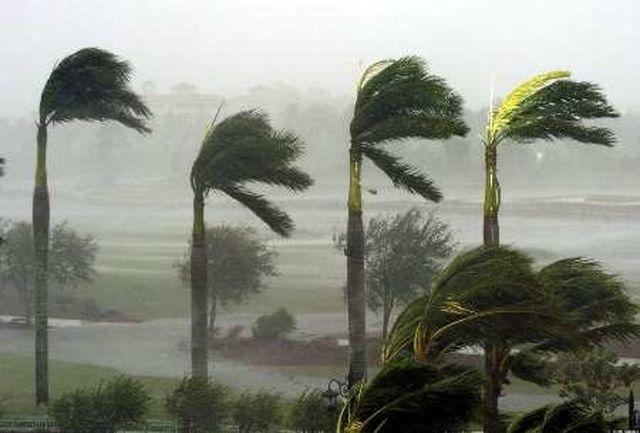 باد شدید ۱۱ نفر را قربانی کرد