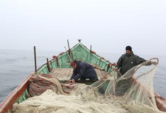 صید ماهی سفید در دریای خزر