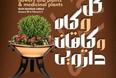 آغاز به کار چهارمین نمایشگاه سراسری گل و گیاه از 30 دی ماه در بندرعباس