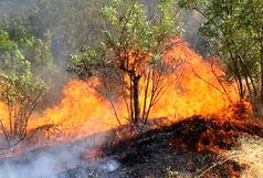 وقوع آتش سوزی در جنگلهای سیاهکل