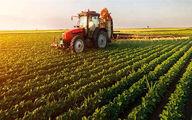مرکز نوآوری کشاورزی کردستان تأسیس می شود