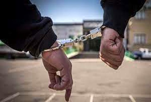 ناکامی قاچاقچیان در انتقال احشام قاچاق در بندرعباس