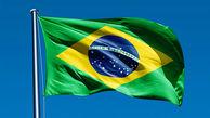 اقتصادهای  ایران و برزیل مکمل هم هستند