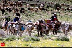 هر خانوار عشایر خراسان شمالی در ایام کوچ بیش از ۴۰ میلیون ریال متحمل هزینه رفت و آمد شد
