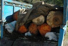 کشف 6 تن چوب جنگلی قاچاق در آستانه اشرفیه