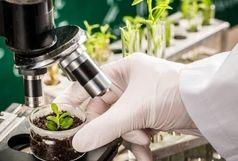 طرح ارائه خدمات رایگان شرکت های خدمات فنی و مهندسی و کلینیک های گیاهپزشکی در آذربایجانغربی