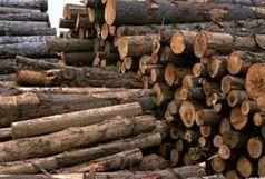 کشف 10 تن چوب قاچاق در گیلان