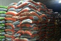 کشف 220 تن برنج احتکار شده در زابل