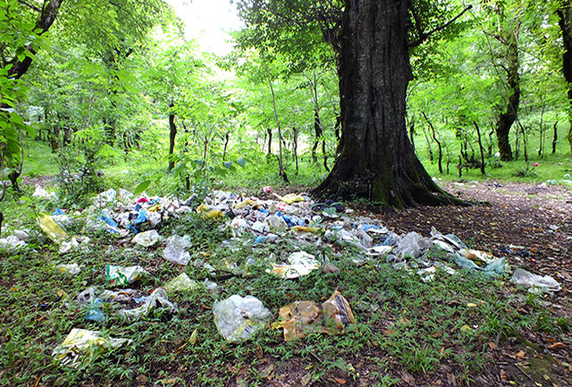 برخی از مسئولان درکی از مفهوم محیط زیست ندارند/ مشکلات اقتصادی و اجتماعی موجب عدم تعهد مردم به طبیعت