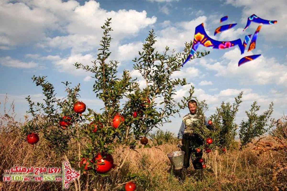 سفر به روستای ابوشانک در  برنامه رادویی «آیش»