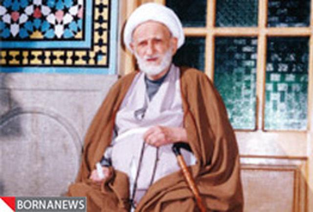 پیشنهاد آیت الله بهجت(ره) برای رسیدن به مقام علماء / تنها با حرف زدن نمیتوان به جایی رسید
