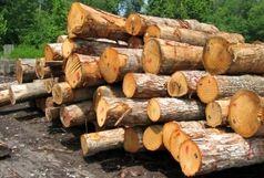 کشف بیش از 2 تن چوب قاچاق در آباده