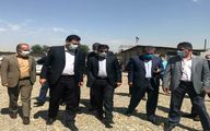 بازدید معاون هماهنگی امور اقتصادی استاندار تهران از بزرگترین پروژه در حال احداث کشتار گاهی خاورمیانه در بخش قلعه نو