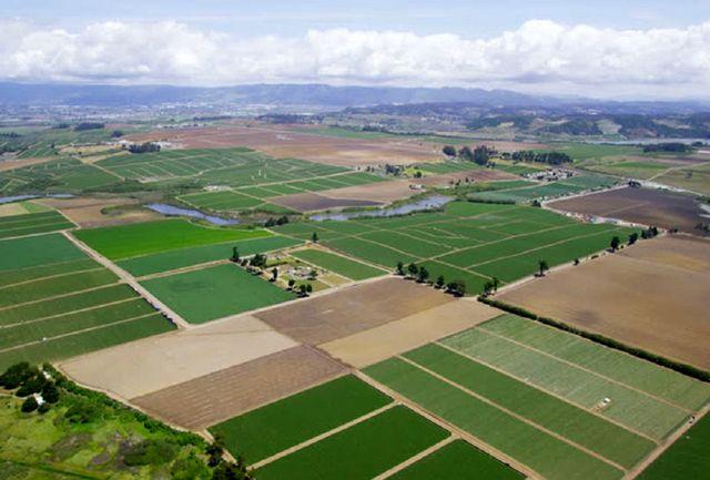 کاداستر بندی 114 هکتار اراضی کشاورزی تا سال آینده