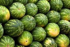 هندوانه با طعم هروئین/ جاساز هروئین در بار هندوانه