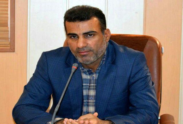 توسعه بازاریابی شبکه ای در استان