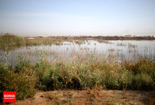 چگونگی صید سرمایه از زمین های سیلابی/ سیلی که می تواند ثروت شود