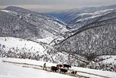 تداوم بارش برف و باران در گیلان