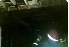 وقوع 5 مورد آتش سوزی در شهرستان تالش