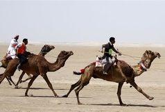 برگزاری مسابقات شتر سواری در شهرستان حمیدیه