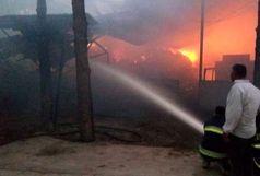 آتش سوزی 12 ساعته در یک دامداری هزار رأسی