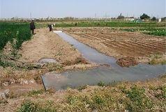 2500هکتار از اراضی ملی استان به امور اراضی واگذار شد