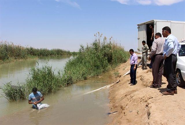 رهاسازی 123 هزار بچهماهی در تالاب شادگان