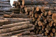 کشف 15 تن چوب جنگلی قاچاق دررضوانشهر