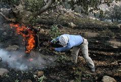 مهار آتش سوزی در ۱۵ نقطه شهر همدان
