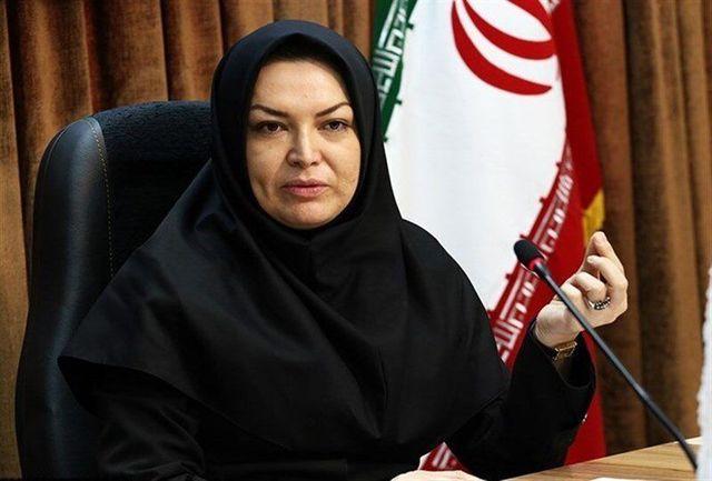۹ کتابخانه عمومی استان همدان تا پایان سال جاری بهره برداری می شوند