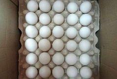 کشف هزارو 900 کیلوگرم تخم مرغ فاسد در آستارا