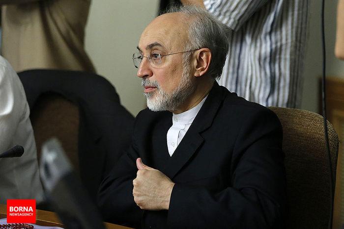 رئیس سازمان انرژی اتمی به عراقچی تسلیت گفت