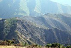 پایان چهار روز آتشسوزی جنگلهای ارسباران