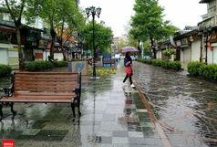 بارش باران تابستان در گیلان