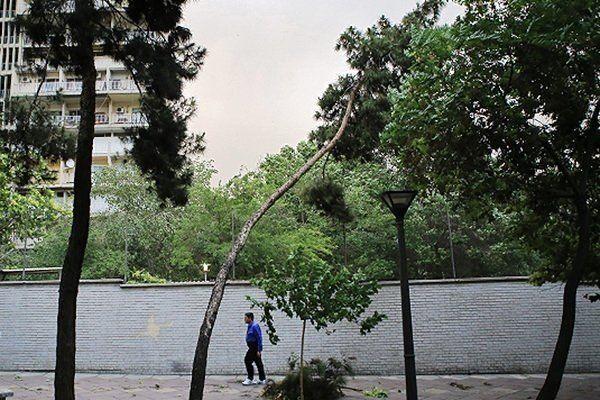 وزش باد شدید در برخی نقاط کشور