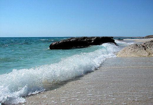 همسایگان خزر باید برای حفظ محیط زیست این دریا تلاش کنند