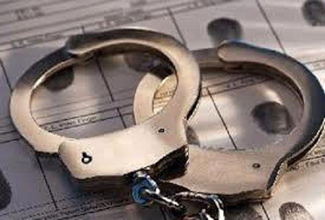 دستگیری سارق سیم برق با 14 فقره سرقت