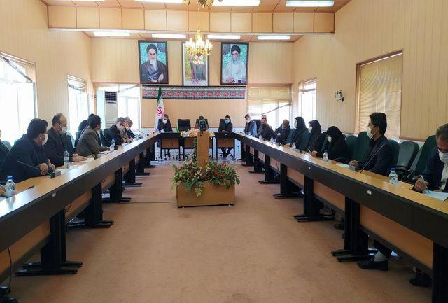۲۸ درصد از درخواستهای وام کرونایی در استان زنجان پرداخت شده است