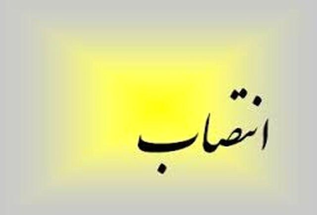 علیرضا پاكدامن سرپرست فرمانداری ویژه شهرستان میناب شد