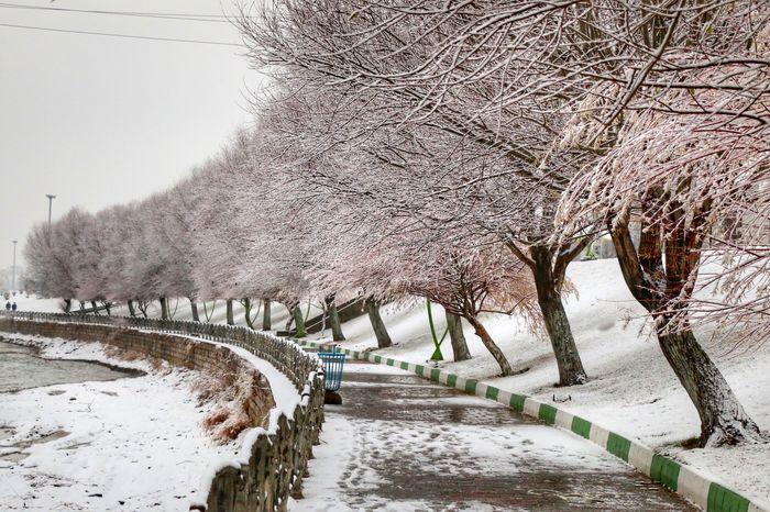 بارش برف و باران در برخی محورهای 4 استان کشور