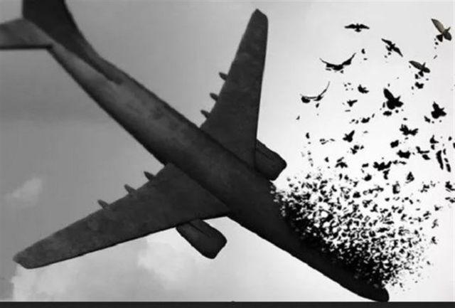 جزئیات خاکسپاری شهدای اصفهانی سقوط هواپیمای اوکراینی