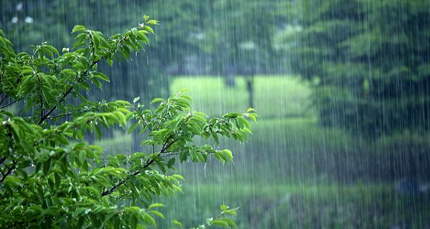 بارشهای پراکنده باران در راه است