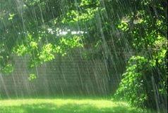 باران هوای زاهدان را بهاری کرد
