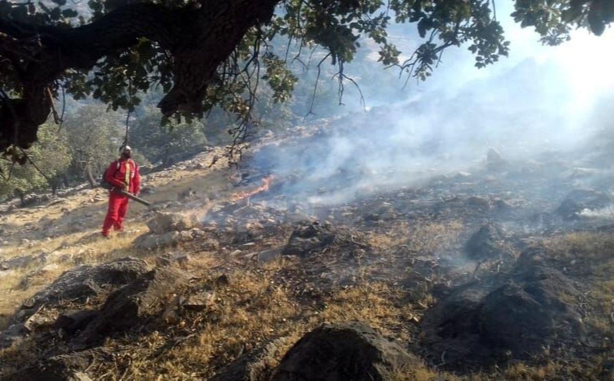 جنگل ها و مراتع کوه نارک گچساران در آتش میسوزد