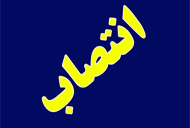 دبیرهیات ورزش های سه گانه استان البرز معرفی شد