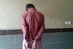 دستگیری سارق حرفه ای با اعتراف به 8 فقره سرقت