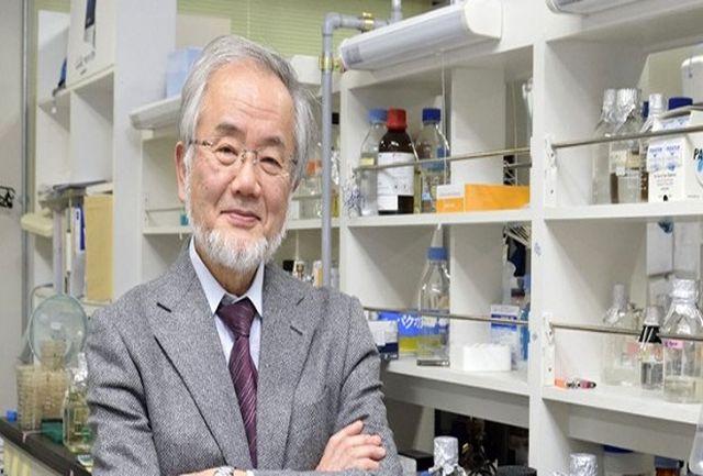 کشف جالب برنده نوبل فیزیولوژی در خصوص تاثیر روزه داری بر مکانیسم بدن