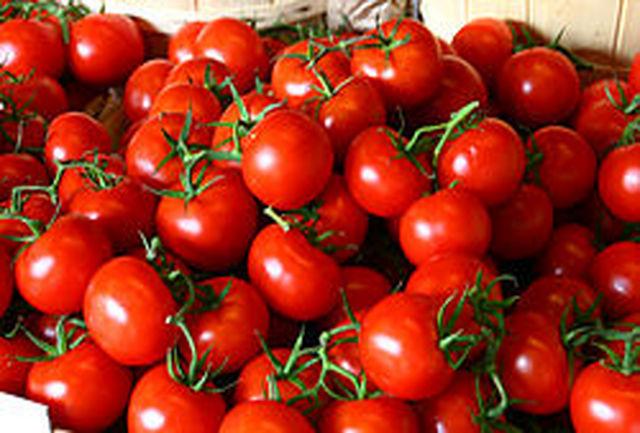 خطرات وحشتناک خوردن گوجه فرنگی که از آن بی خبریم/ این افراد گوجه فرنگی نخورند