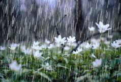 ثبت ۱۰۳ میلی متر باران در ایلام
